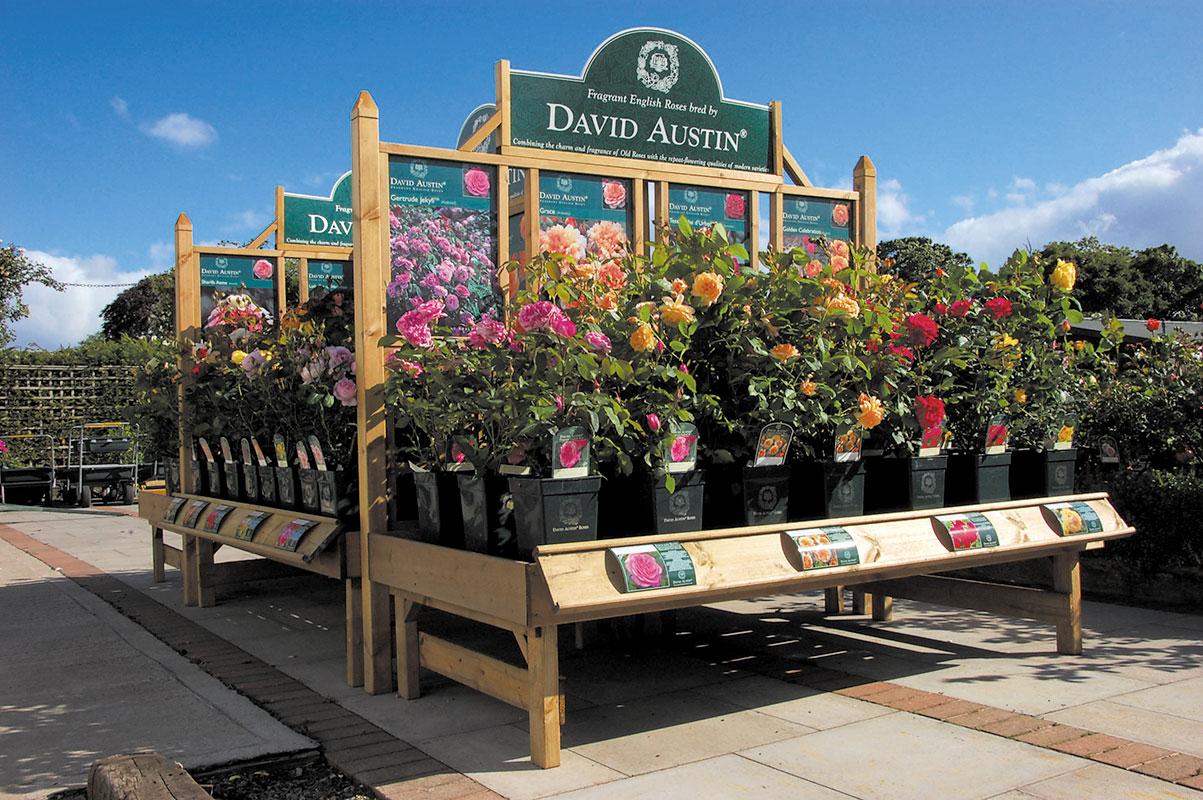 david-austin-roses-outdoor-display-bench-and-trellis-01