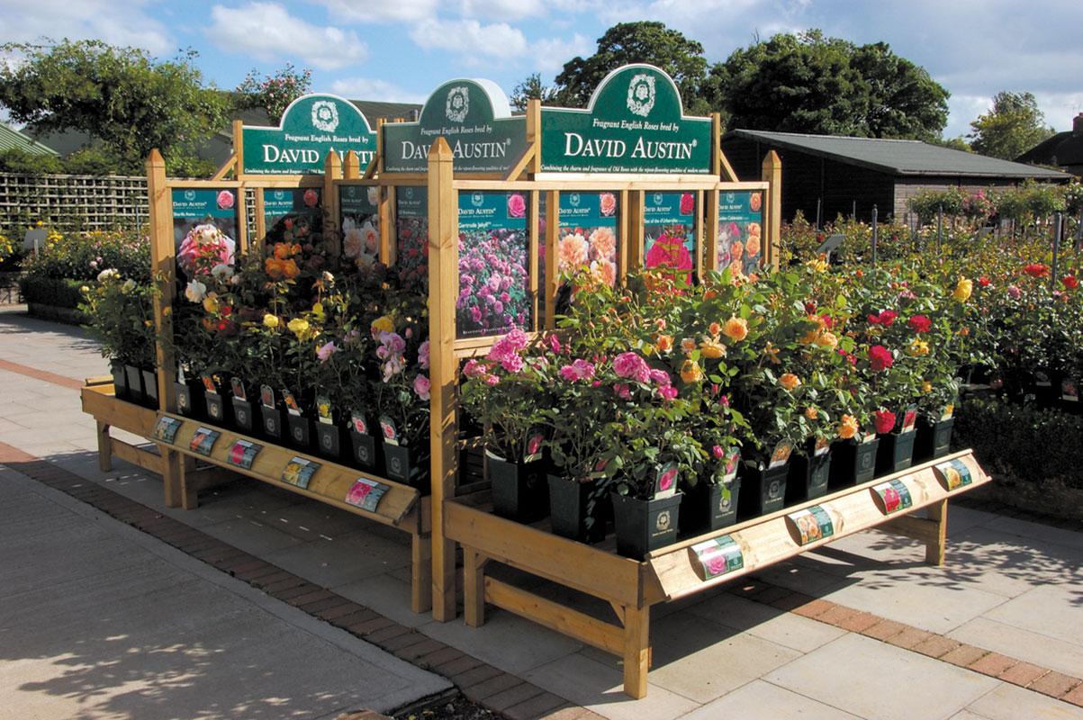 david-austin-roses-outdoor-display-bench-and-trellis-02